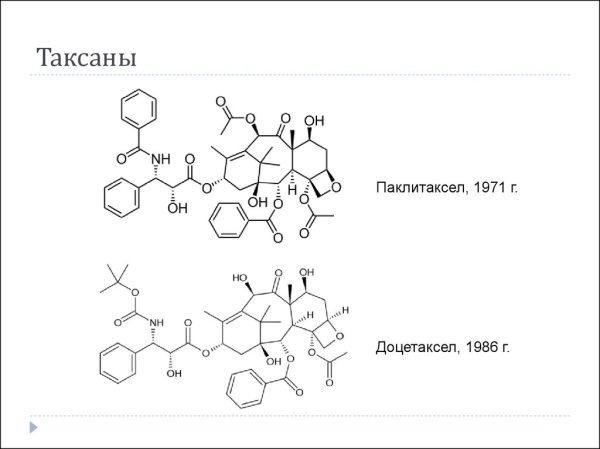 Основы противоопухолевой химиотерапии - online presentation