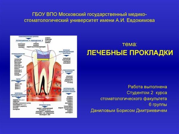 Лечебные прокладки презентация онлайн