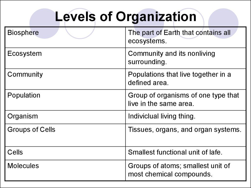 The Nature Of Life Cell Structure And Function