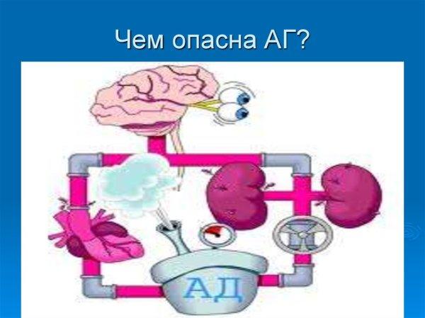 Профилактика сердечно - сосудистых заболеваний ...