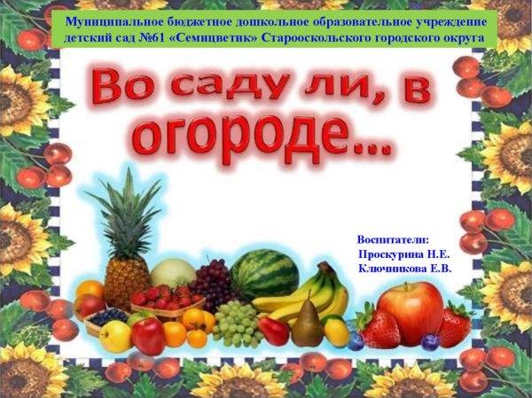 Полезные овощи и фрукты. Образовательная деятельность с ...