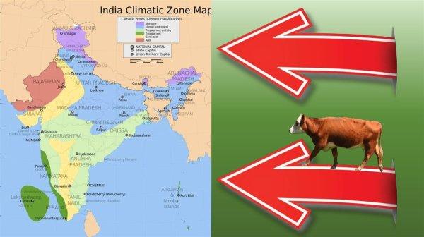 Индия. Флаг и герб Индии - презентация онлайн