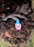 Trail gnome