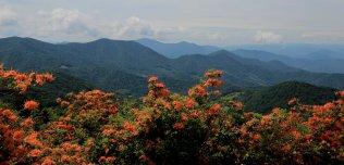 Roan Highlands views