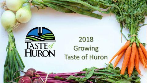 taste of huron report