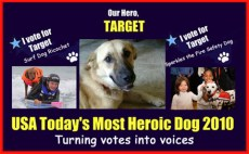"""NOMINEES OF USA TODAY'S """"MOST HEROIC DOG OF 2010"""" TURN THEIR VOTES INTO VOICES FOR FELLOW NOMINEE, TARGET. TARGET WAS ERRONEOUSLY EUTHANIZED AFTER SAVING LIVES IN AFGHANISTAN"""