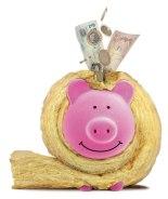 Energy Saving Pig
