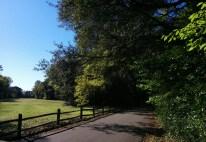 A shady path at the old Blue Cypress Golf Club in Arlington.