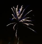 firework-17