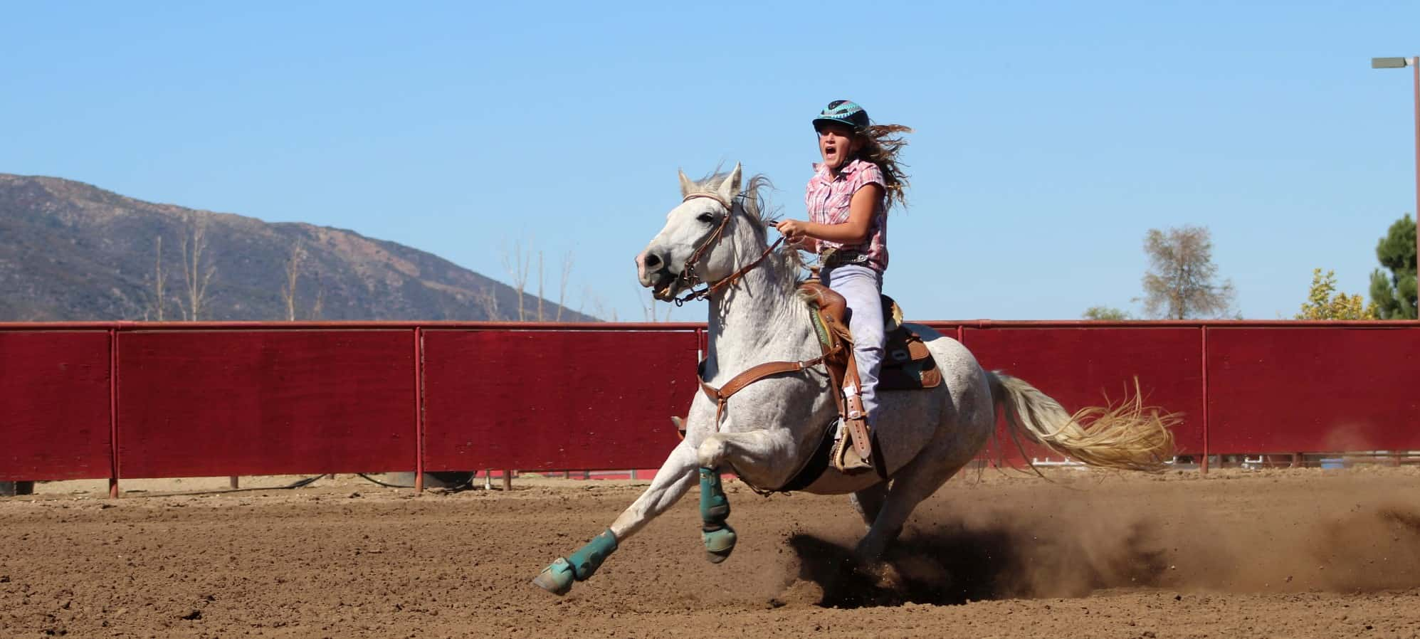 Thundering Hooves Show Participation