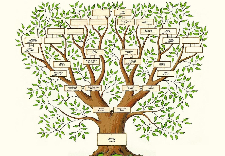 Cercle Genealogique De La Drome Des Collines Manifestations