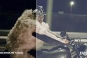 Volkswagen – Sheep CGI Breakdown