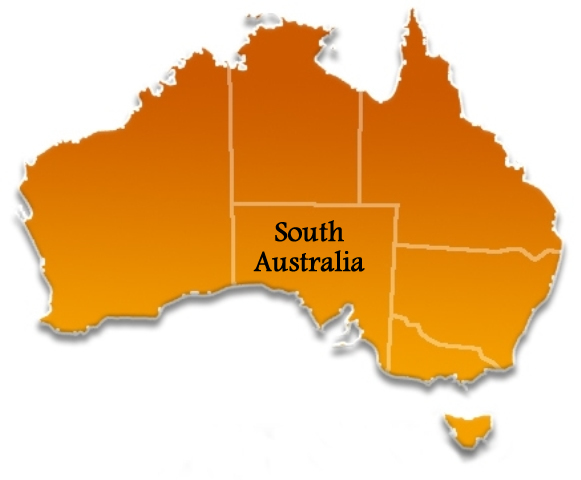 Pathological Internet and Video Game Users in South Australian Teens