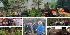 The Community Garden Network