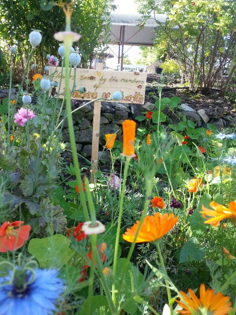 History of East Clare Co-operative & Community Garden
