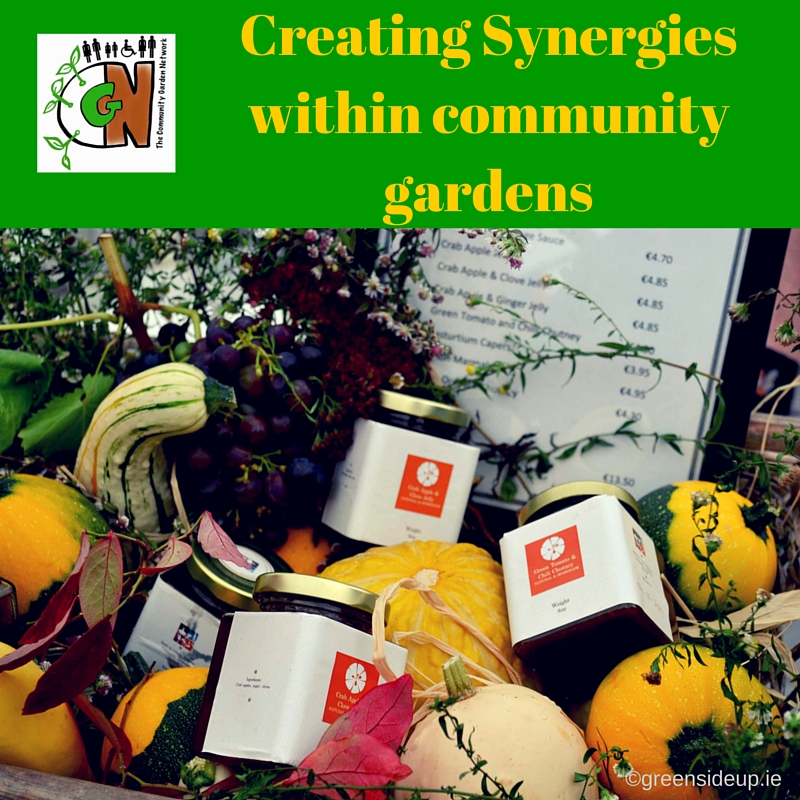 Creating Synergies within community gardens