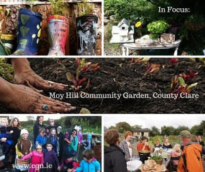 In Focus: Moy Hill Community Garden, County Clare