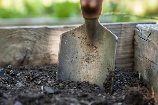 Community Gardens Ireland Against Climate Change