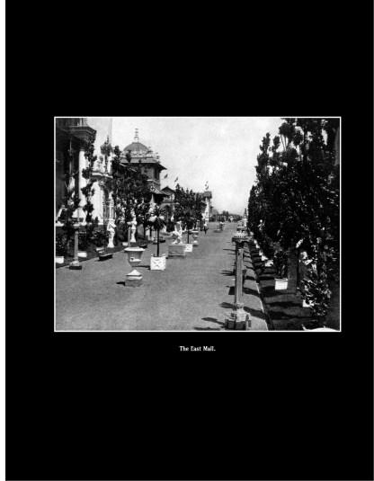 1901 Buffalo World's Fair: The Pan-American Exposition in Photographs Image 3