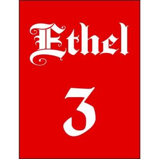 Ethel the Cyborg Ninja #3