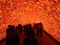 Inside the momiji tunnel