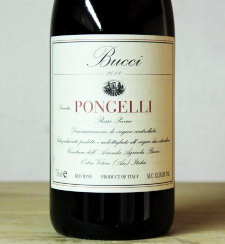 Villa Bucci 'Pongelli' Rosso Piceno