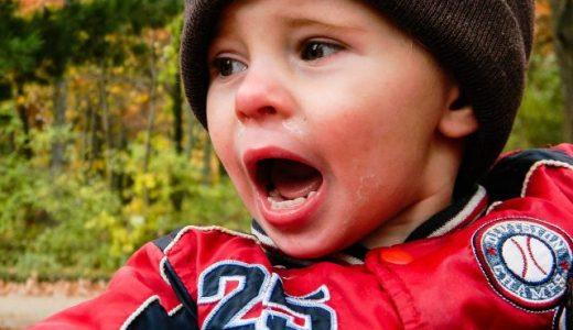 2歳児には「おうむ返し」が効く!子育てコーチング(1)