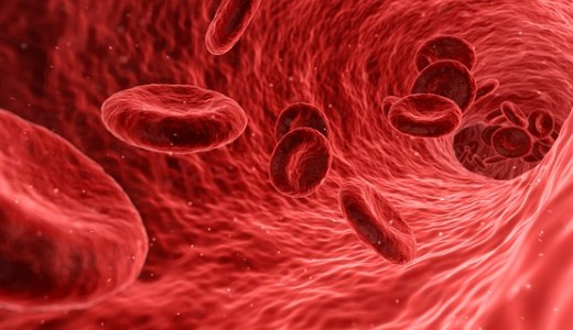 【美と若さの新常識】5分で読める「増やせ!赤血球」