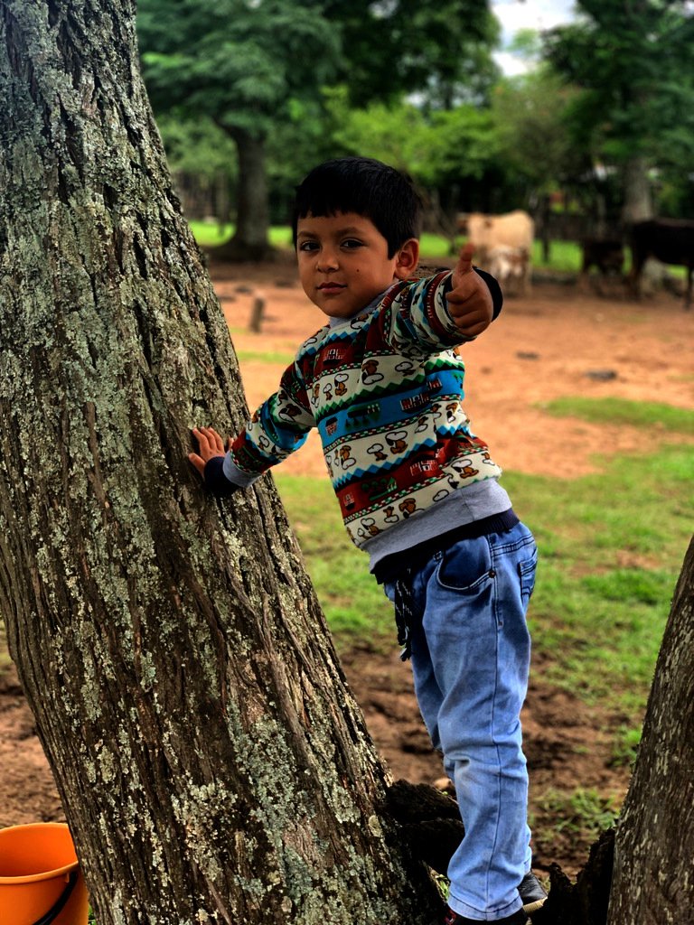 Alejandro playing in the shade tree of a corral