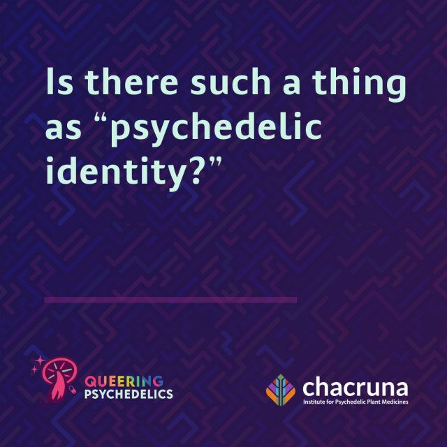"""Is there such a thing as """"psychedelic identity?"""""""