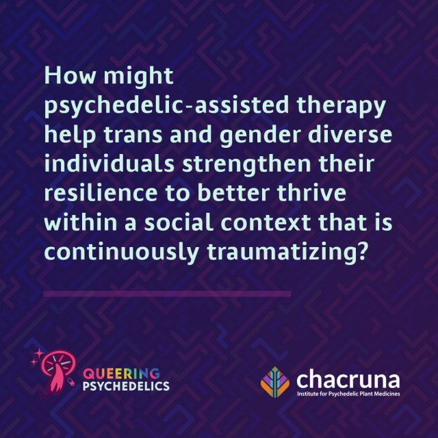 How might psychedelic-assisted therapy help trans and gender diverse individuals strengthen their resilience to better thrive within a social context that is continuously traumatizing?