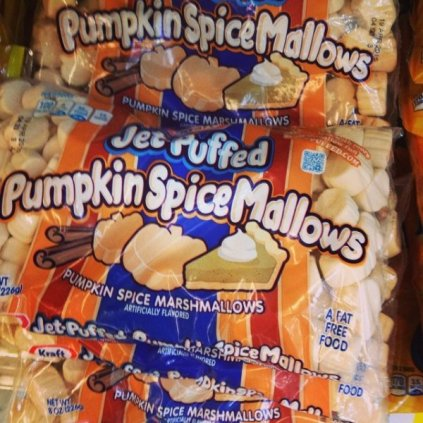 pumpkin-spiced-food-stuff-8