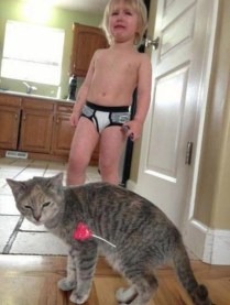a-few-things-only-cat-owners-will-understand-31-photos-17