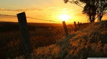 sunset_through_barbed_wire_warwick_qld-wallpaper-1920x1080