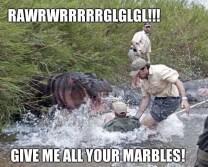 best-damn-photos-angry-hippo-marbles-meme