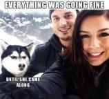 best-damn-photos-everything-fine