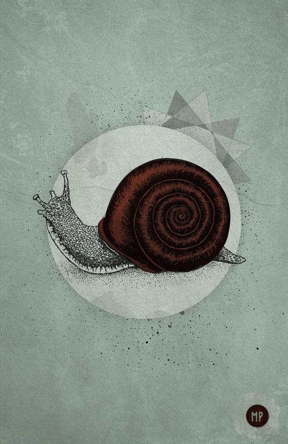 ecargot_full