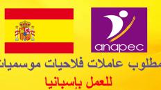 مطلوب عاملات فلاحيات موسميات للعمل بإسبانيا لسنة 2020