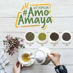 Kit #AmoAmaya