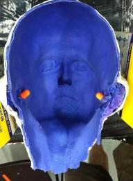 Silicone cast of head