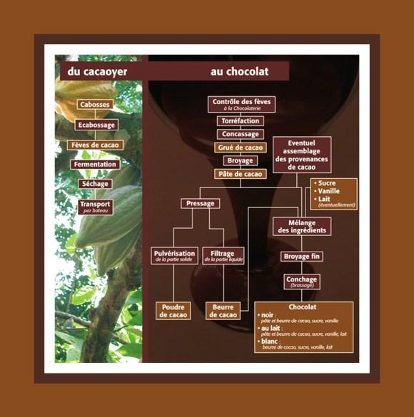 du-cacaoyer-au-chocolat