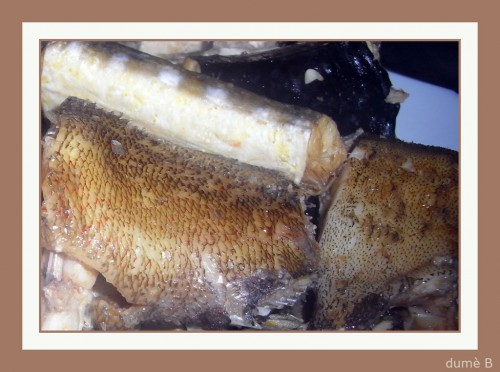 poisson bouillabaisse