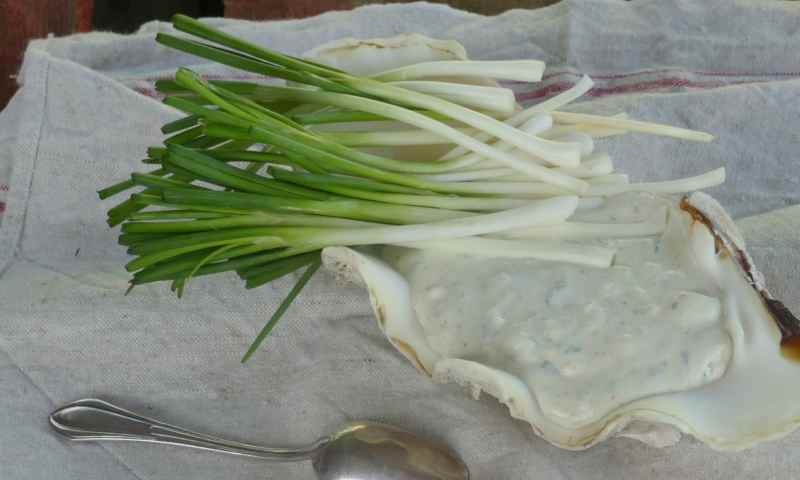 Rillettes de poisson au fromage de chèvre frais