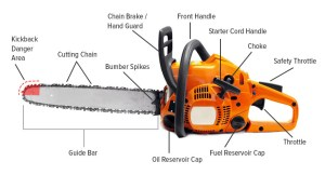 Chainsaw Buying Guide | Chainsaw Journal