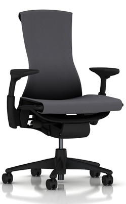 Herman Miller Embody - Herman miller office chair