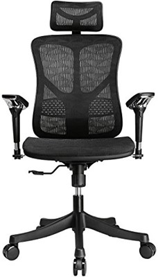 Argomax Mesh Ergonomic Chair - office chair with neck support