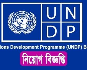 undp ngo job circular