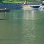 Vissen in het Luganomeer - Chaletluganomeer.nl