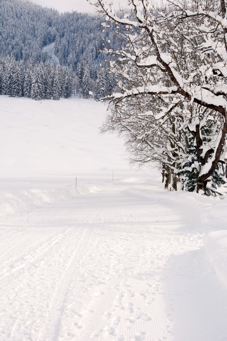 chalet Skidh . webcam des pistes vaujany alpe d'huez