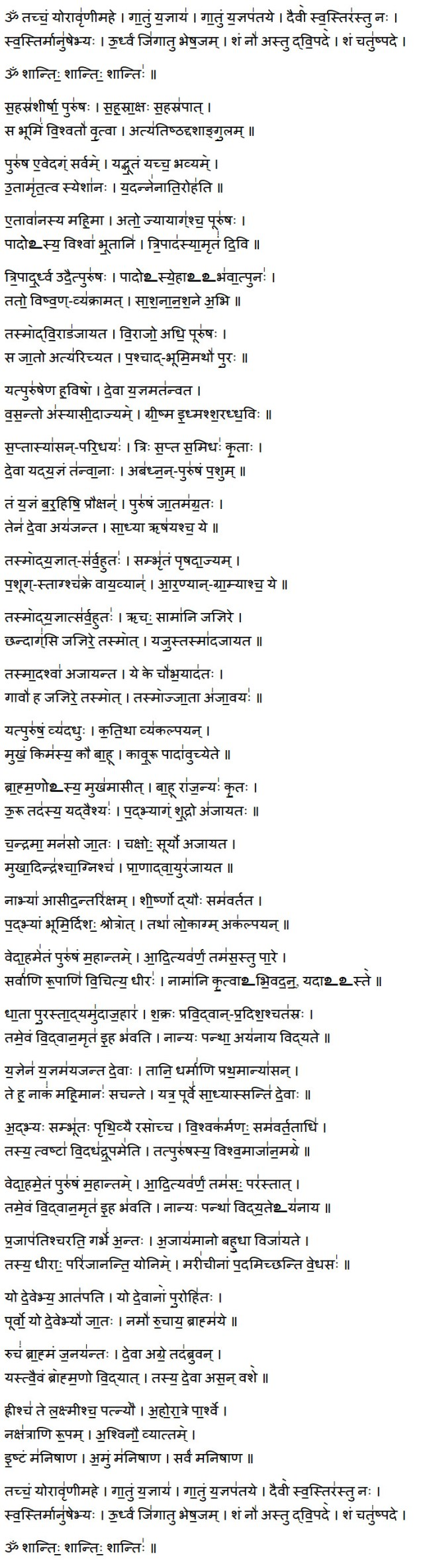 purusha suktam lyrics in sanskrit